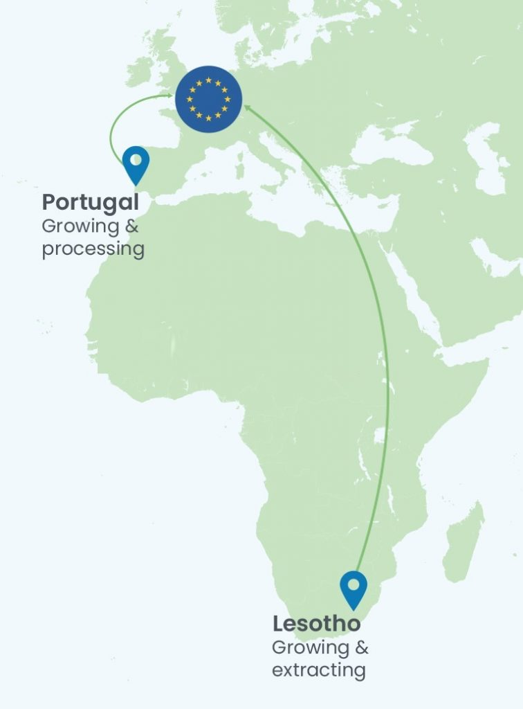 Eurocan-map 1